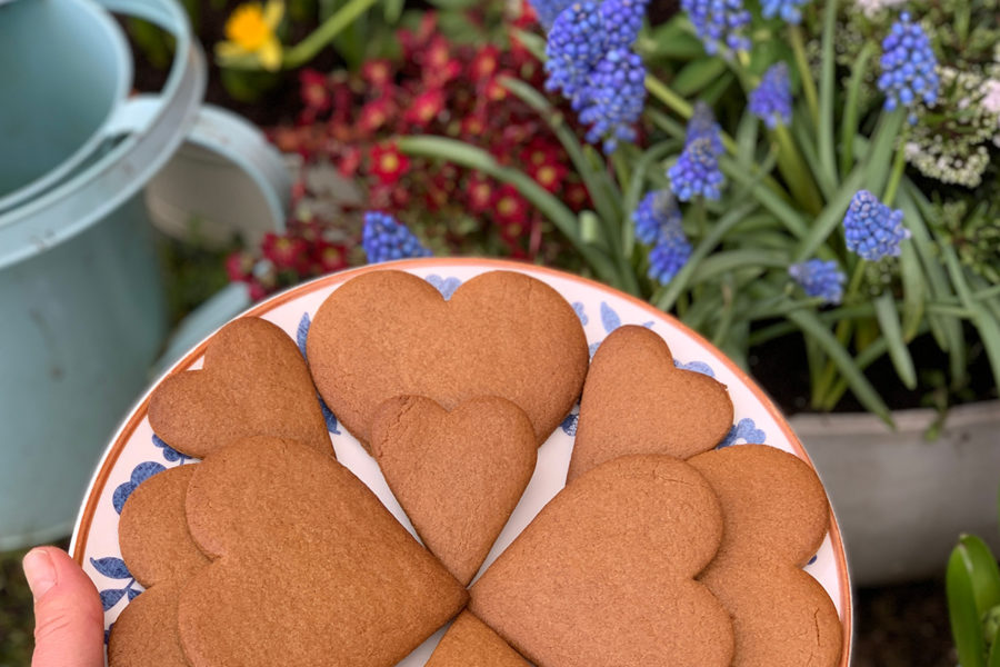 Lady Brunner's gingerbread. Delicious recipes from famous chefs.