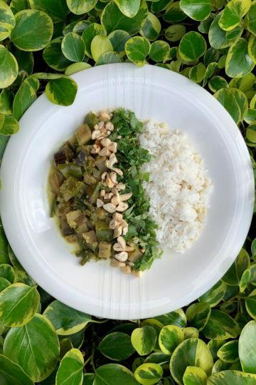 Aubergines vegan green curry by Andrei Velichko