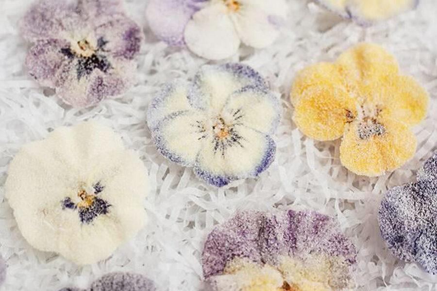 Кристаллизованные цветы - элегантные и деликатные украшения для десертов.